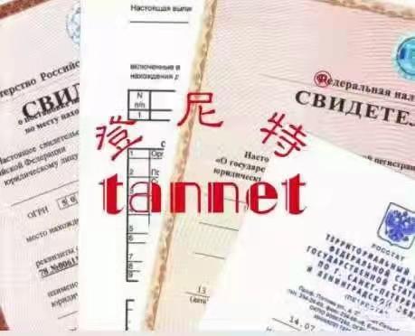 海外公司注册案例